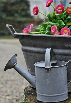 pot of flowers & a watering can