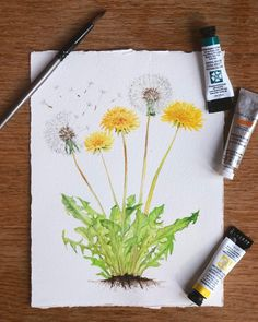 it) submitted by mookitabonita to /r/Watercolor 1 comments original - International - Digital Fantasy Ar. Watercolor Painting Techniques, Watercolour Tutorials, Watercolour Painting, Painting & Drawing, Watercolors, Dandelion Drawing, Dandelion Art, Tattoo Dandelion, Watercolor Cards