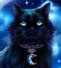 Yancy's catering in Belpre, OH - animals - Fantasy - Cat Drawing Warrior Cats, Gato Anime, Magic Cat, Cute Animal Drawings, Drawing Animals, Cat Wallpaper, Anime Animals, Cat Drawing, Fantasy Creatures