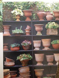 Collection of terracotta pots -- Victoria Pearson terracota Garden Shop, Dream Garden, Garden Urns, Garden Tools, Terrace Garden, Glass Garden, Unique Garden, Natural Garden, Terra Cotta