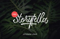 [Free] Storytella Script – Letterhend Studio