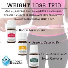 Young Living Essential Oils Weight Loss Trio Lemon Peppermint Grapefruit www.theoilgeeks.com