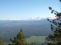 View from the top... black butte summit hike. Oregon isn't so bad after all.