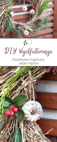 Winter DIY: make bird food yourself - tit rings without plastic - Mary loves Lava, Fatsia Japonica, Benefits Of Gardening, Winter Diy, No Waste, Diy Upcycling, Old Wall, Bird Food, Green Plants