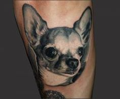 Not going to get this but this looks like my dog! Lol Chihuahua tattoo