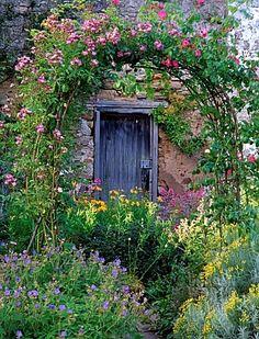 cottage garden and wildlife refuge