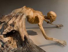 skeletal man emerging from root stump - Javier Pérez
