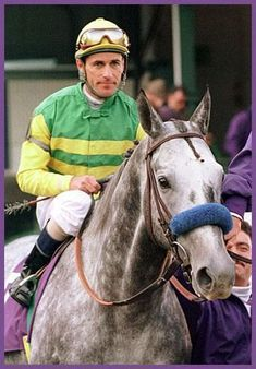 Silver Charm- 1997 Kentucky Derby Winner