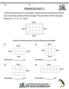 Math Salamanders - 3rd grade PERIMETER worksheets