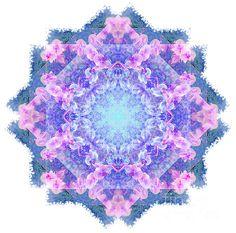 Pink and purple orchid mandala by Tracey Everington. Purple Orchids, Fractals, Art Designs, Fine Art America, Mandala, Birthdays, Digital Art, Christmas Gifts, Greeting Cards