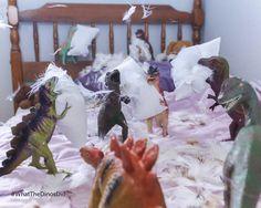 Dinovember pillow fight