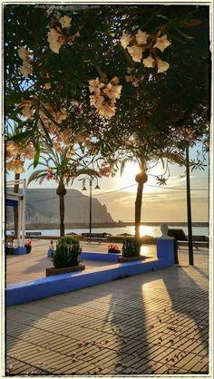 Boulevard bij Puerto Javea Spain, Earth, Outdoor Decor, Home Decor, Viajes, Decoration Home, Room Decor, Home Interior Design, Home Decoration