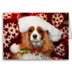 Cavalier King Charles Spaniel Christmas Love Greeting Cards