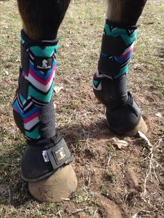 Teal chevron sports medicine boots with black bell boots classic equine Horse Boots, Horse Gear, My Horse, Horse Love, Horse Halters, Western Horse Saddles, Western Tack, Riding Hats, Horse Riding