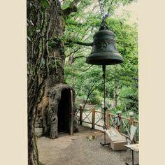 Kutaisi Kolkhuri Botanical Garden