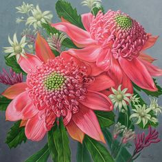 Australian Flora Painting - Pink Waratahs, Flannel Flowers And Kangaroo Paws by Fiona Craig Flower Prints, Flower Art, Flower Ideas, Pretty Flowers, Colorful Flowers, Waratah Flower, Australian Native Flowers, Australian Garden, Flannel Flower
