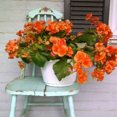 Orange and green: from an end-of-summer mood board on Lovely Clusters - The Pretty Blog.