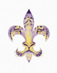 Never seen a Tiger Fleur De Lis like this. Louisiana Art, Louisiana Homes, Louisiana State University, Louisiana Swamp, Fight Tiger, Lsu Tigers Football, College Football, Tiger Love, New Orleans Saints