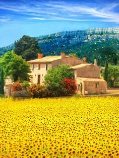 02/22/17 - Hi dear ladies; today we are going to a beautiful house in Sainte Maxime, France. I thought so many beauties of nature are all together in this place. I'm sure we will spend fun hours here and collect lovely memories. Just pack your bags and be ready :) xoxo ❤ ~Tomris