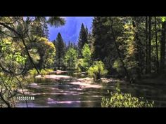 Abraham-Hicks ♪♫ Rollin' Downstream ♥♥♥