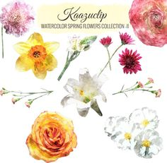 Watercolor Spring Flowers Coll- II by Kaazuclip on @creativemarket