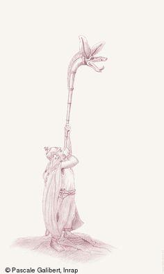 Warrior Drawing, Celtic Warriors, Tattoo, Drawings, Illustration, Protohistory, King, World, Artist