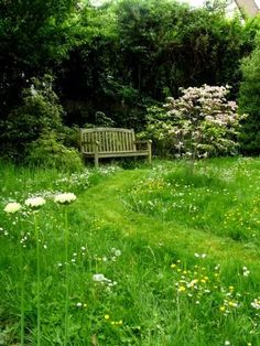 :: Clipped paths in flowered lawn. Cornus florida rubra and white allium . Meadow Garden, Design Jardin, Florida, Allium, Some Pictures, Garden Plants, Paths, Castle, Modern