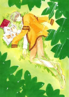 CLAMP, Madhouse, Cardcaptor Sakura, Cardcaptor Sakura Illustrations Collection 2, Yukito Tsukishiro