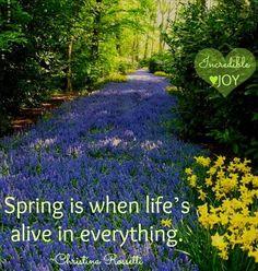Spring quote via www.Facebook.com/IncredibleJoy