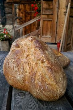 """Ziel war ein Brot nach Art eines französischen Landbrotes, also etwas unregelmäßige helle Krume und kräftige Kruste. Aus experimentellen Gründen haben wir auf der Alm mit drei verschiedenen Sauerteigen gearbeitet, die einen ganz eigenen Geschmack auf das Brot übertragen haben. Die Krume ist überwiegend wild strukturiert und angenehm elastisch. Die """"deutsche"""" Komponente kommt vor allem Weiterlesen..."""