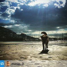 Etiqueteu les vostres fotos amb #aRoses i #VisitRoses i les compartirem com fem avui amb aquesta foto de @masip_3 ... Etiqueta tus fotos con #aRoses y #VisitRoses y las compartiremos!