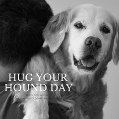 Hug Your Hound Day is celebrated every 2nd Sunday of September