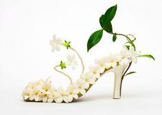 Wedding Cards Stephanotis Wedding Shoe