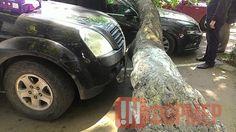 В Ялте на автомобили упало дерево: желающих возместить убытки не наблюдается (фото) http://ruinformer.com/page/v-jalte-na-avtomobili-upalo-derevo-zhelajushhih-vozmestit-ubytki-ne-nabljudaetsja  Оставляя автомобиль на платной парковке, владелец, по идее, вправе рассчитывать, что вернувшись найдет свое имущество в целости и сохранности. К сожалению, большинство предприятий, открывающих стоянки, абсолютно уверены, что их мера ответственности ограничивается исключительно оборудованием ограждения…