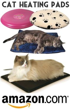 Cat Heating Pads - Cat heating pads are compact, padded cat devices that provide warmth as pet cats rest on them. Most domesticated feline pets would appreciate cat heating pads particularly during cold climate though they may be comfy most of the time, with older cats spending additional time on them than younger ones.For samples of cat heating pads for your feline companion, pay a visit to the website of Amazon.com and read the countless cat heating pads reviews.