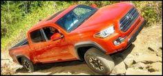 Toyota corolla and Toyota on Pinterest