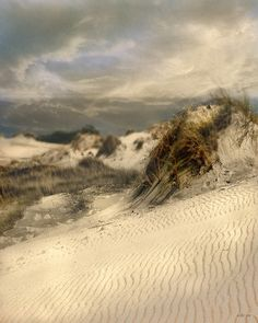 Dunes in East Hampton - I have a similar painting that belonged to my grandmother. It will always remind me of my childhood at the beach.