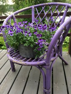 Blueberry, Cottage, Chair, Plants, Furniture, Home Decor, Berry, Decoration Home, Room Decor