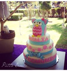 Comunion Buhos cakes
