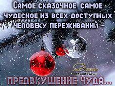 image (640×480)