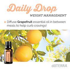 Bitter? Emotional Wellness Daily Drop : doTERRA's Geranium ...