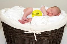 Baby Milestone Stickers ... from 'ManyMilestones' on Lilyshop for $14.99