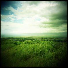 Green hawaii... bigislandreale.com
