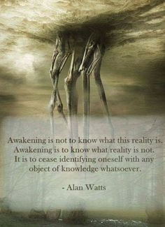 Awakening is not to know what this reality is.] Awakening is to know what reality is not. It is to cease identifying oneself with any object of knowledge whatsoever. - Alan VVatt's - iFunny :) Spiritual Awakening Quotes, Spiritual Wisdom, Perspective On Life, Perspective Quotes, Alan Watts, Philosophy Quotes, Meditation Quotes, Mindfulness Meditation, Spiritual Gangster
