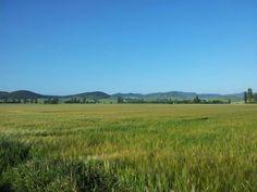 Cielo azul desde primera hora en Agroturismo Arkaia