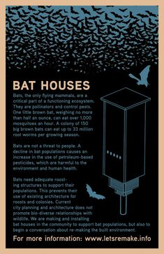 Bird House Kits Make Great Bird Houses How To Make Box, How To Plan, Bat House Plans, Bat Box, Gothic Garden, Bird Aviary, Moon Garden, Garden Pests, Urbana Illinois