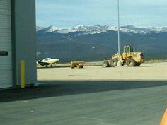 Car Rental Places In Montrose Colorado