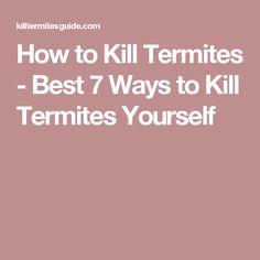 How to Kill Termites - Best 7 Ways to Kill Termites Yourself