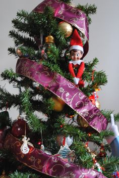 Elf On The Shelf -- Hiding in a Christmas tree! (Click on picture to see more great Elf On The Shelf ideas!)