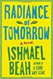 Radiance of Tomorrow - Summary Guide - Book Club Discussion Questions - LitLovers